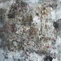 Sage de jour, 140x140cm, 2012, mixed media.